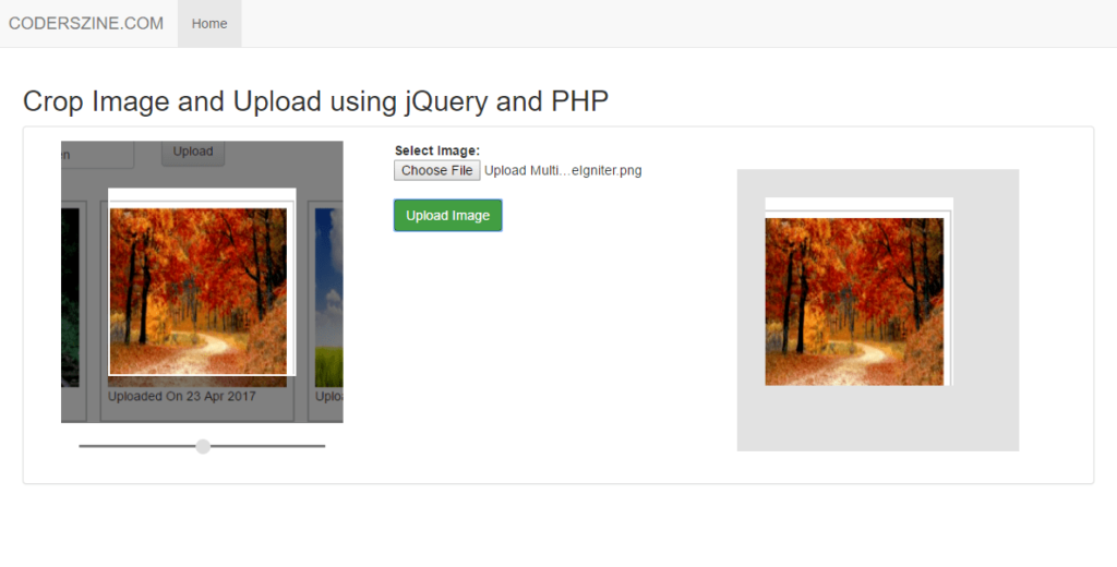 Crop Image and Upload using jQuery and PHP | coderszine